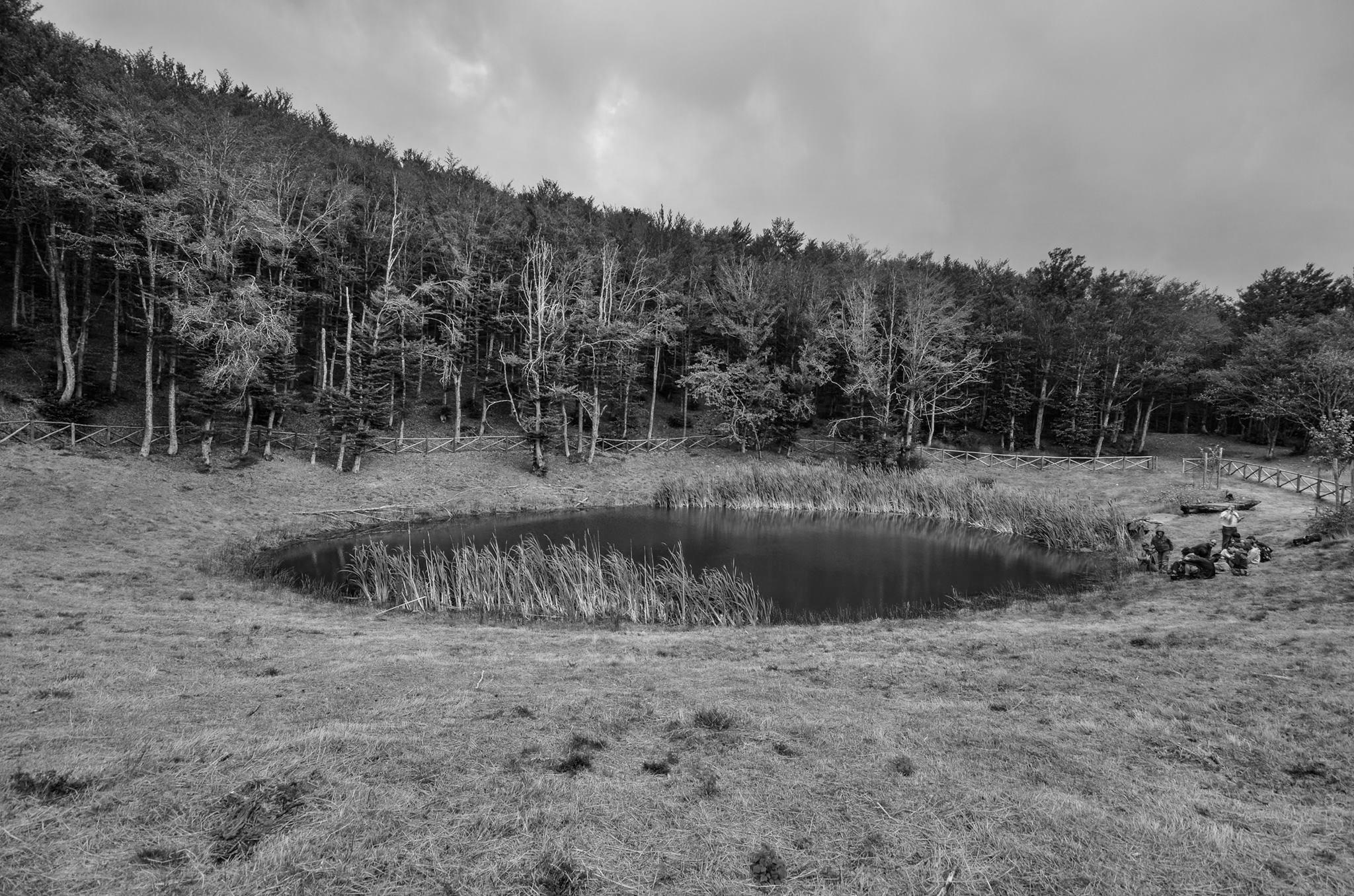 II° Escursione Storica: Gli Etruschi e le acque magiche del Falterona