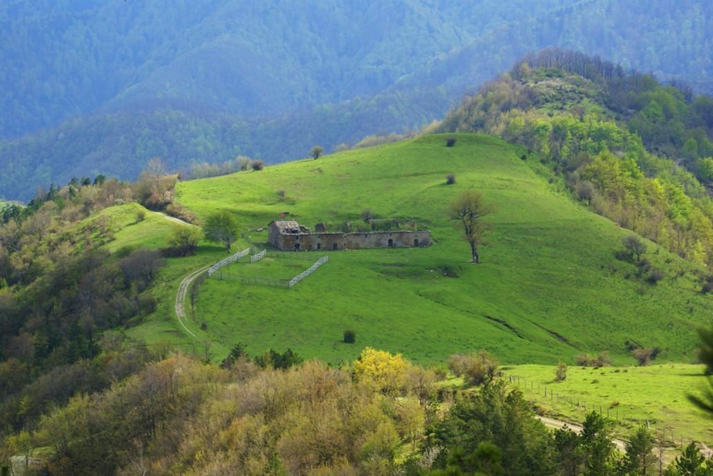 DUE GIORNI ESTIVA: Dove gli alberi toccano il cielo, San Paolo in Alpe