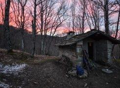 Con Bacco nel bivacco: il Brulè del boscaiolo in Campigna