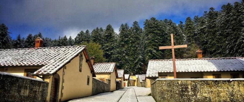 La Foresta incantata dei Monaci Camaldolesi