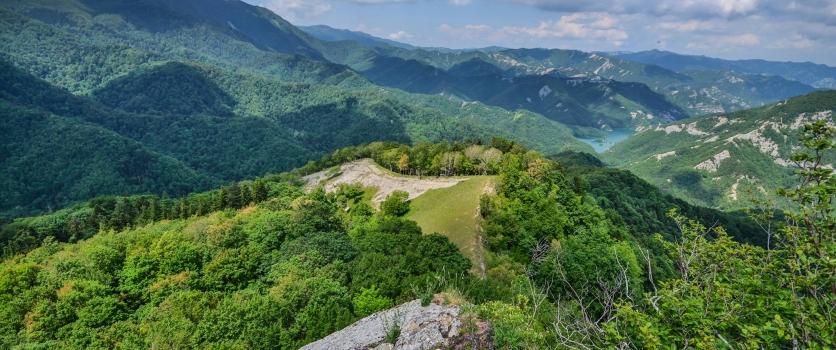 Nel cuore del Parco Nazionale: la foresta incantata della Lama