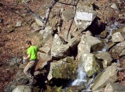 Alle sorgenti dell'Arno tra Idoli e Falchi